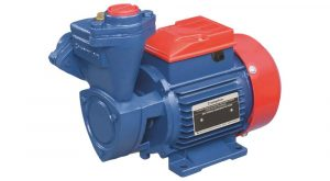 Crompton 1HP SP Mini Champ I Water Pump